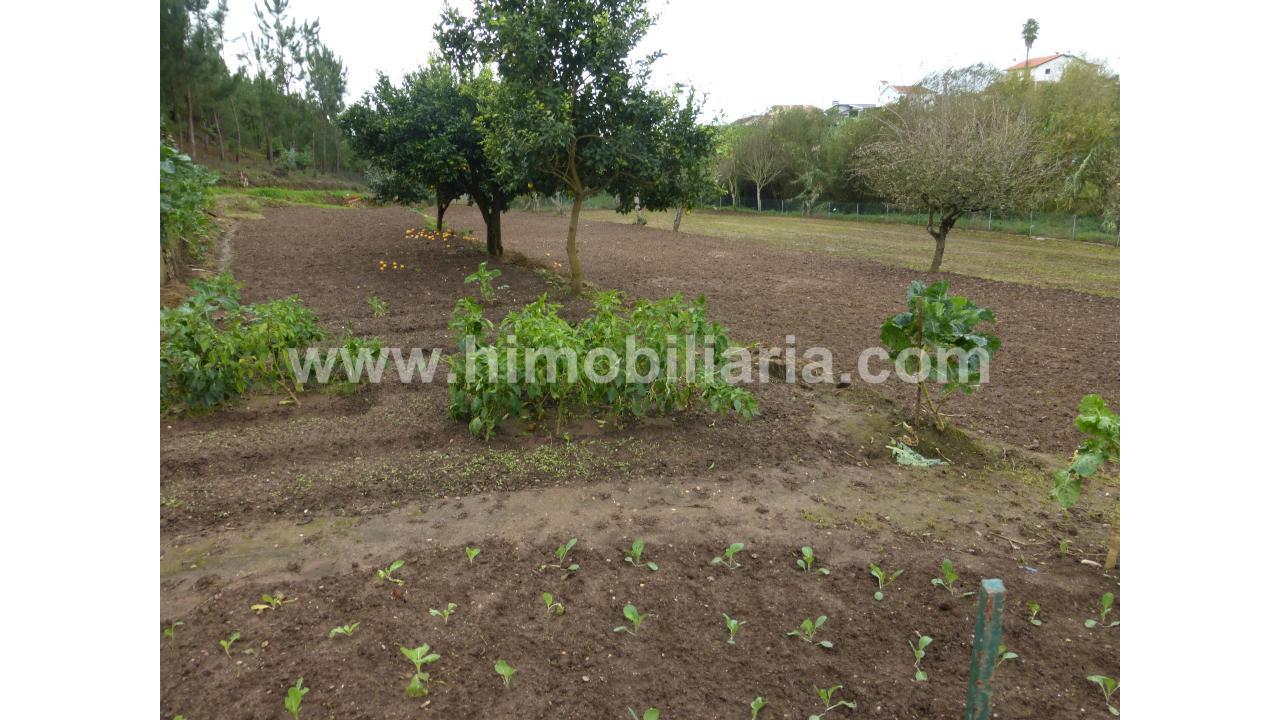 Moradia Isolada T5  - Figueira Da Foz, Alhadas