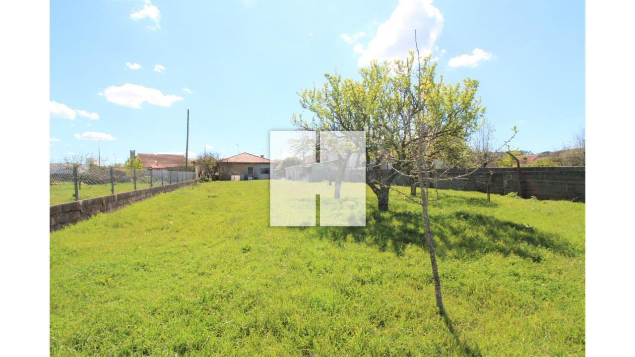 Moradia Rústica T3 com Terreno  - Figueira Da Foz, Alhadas